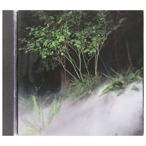 Kevin Schmidt: Fog