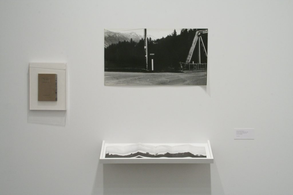 Marian Penner Bancroft, Two Places at Once, Transfigured Wood, 1986, Offset book, published by Western Front with production photograph