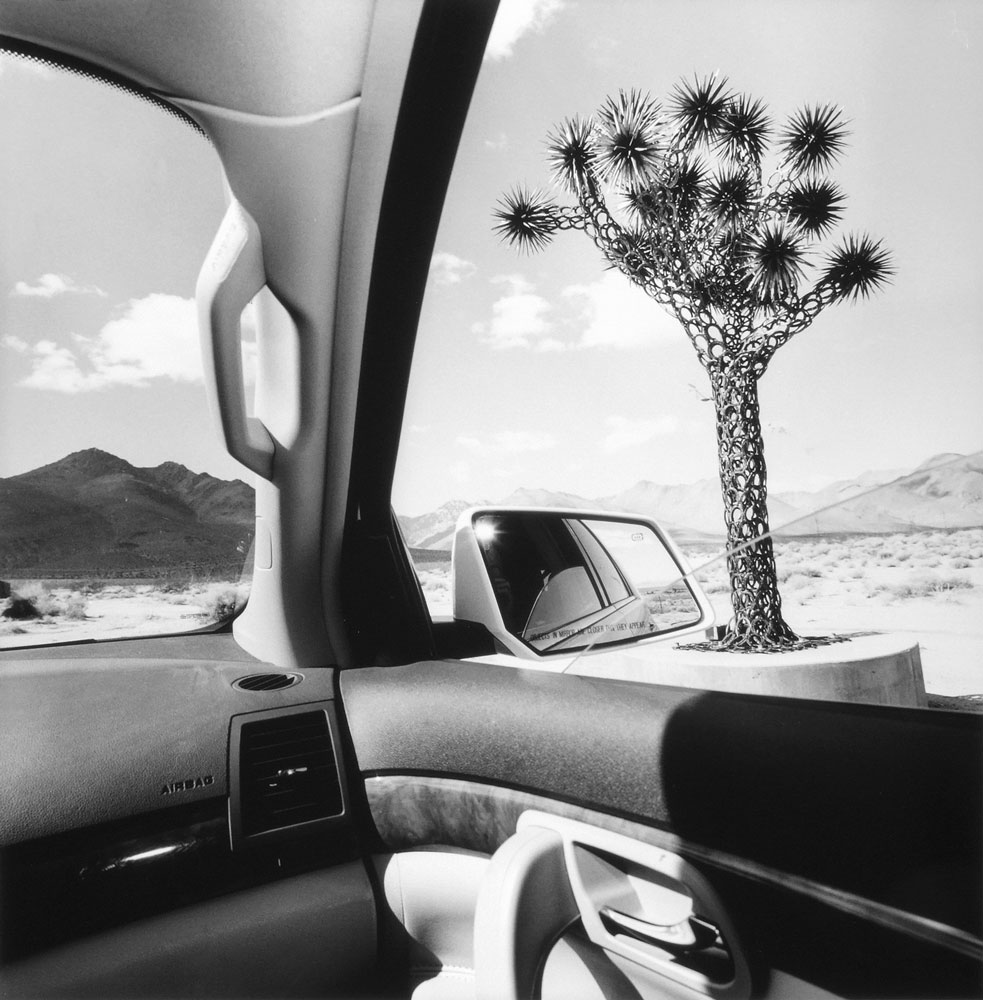 Lee Friedlander, California, 2008, gelatin silver print, courtesy the Artworkers Retirement Society