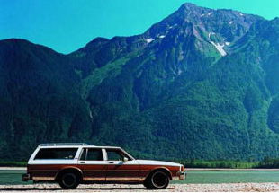 Kevin Schmidt, 1984 Chevrolet Caprice Classic Wagon, 94000 kms, Good Condition, Engine Needs Minor Work, 2000, C-Print, detail 1 of 5 panels