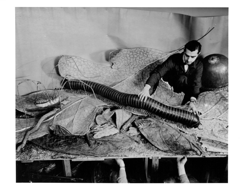 Ray de Lucia installing models for the Forest Floor diorama in the Hall of Forests at the American Museum of Natural History new York, 1958. Photograph by museum staff photographer Alex J. Rota. From the exhibition Camera Obscured: Photographic Documentation and the Public Museum. Photograph courtesy The American Museum of Natural History, New York