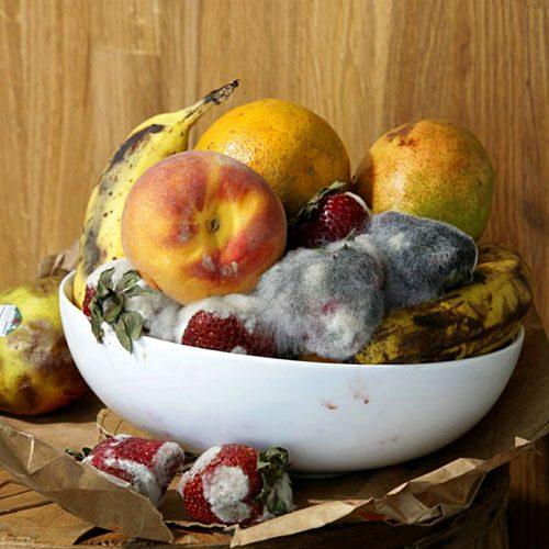 Roe Ethridge, Old Fruit