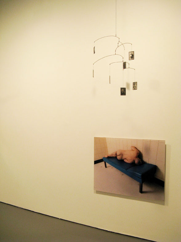 Installation view: Male: Work from the Collection of Vince Aletti