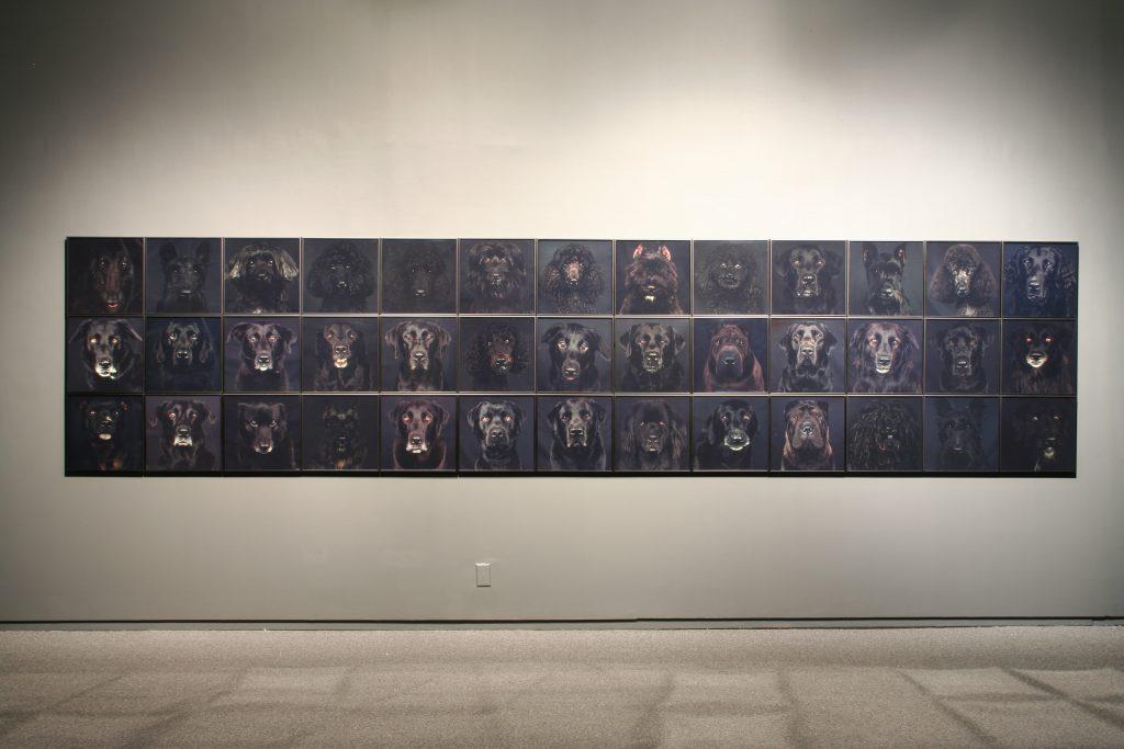 To The Dogs, installtion view (Sheri Hatt)