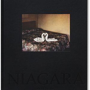 Alec Soth - Niagara