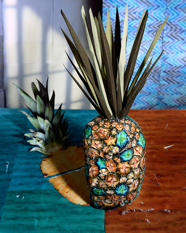 Daniel Gordon, Pineapple and Shadow, 2011. Courtesy the artist and James Fuentes Gallery, New York