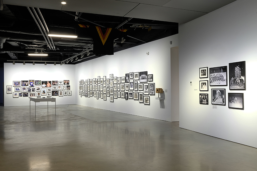 The Canucks - Installation View 3