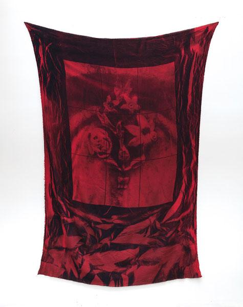 Gregory Kaplowitz, Window (skullflowers)
