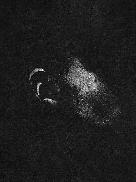 Izabella Provan, Cheek Imprint, 2014. (cameraless photography)