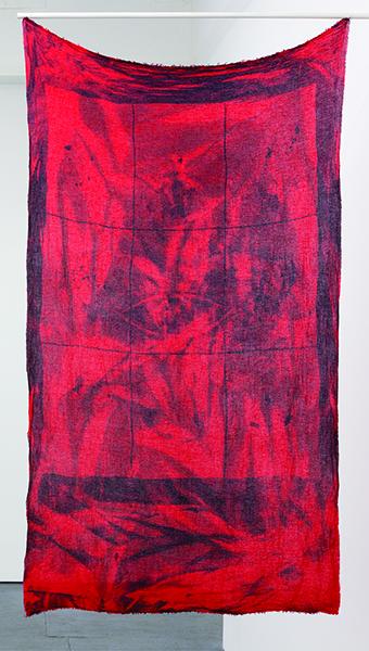 Gregory Kaplowitz, Window(eye), cyanotype photogram
