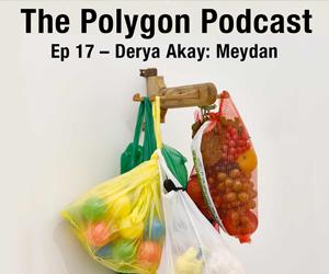 Episode 17: Meydan